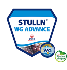 Fungicida Stulln WG Advance
